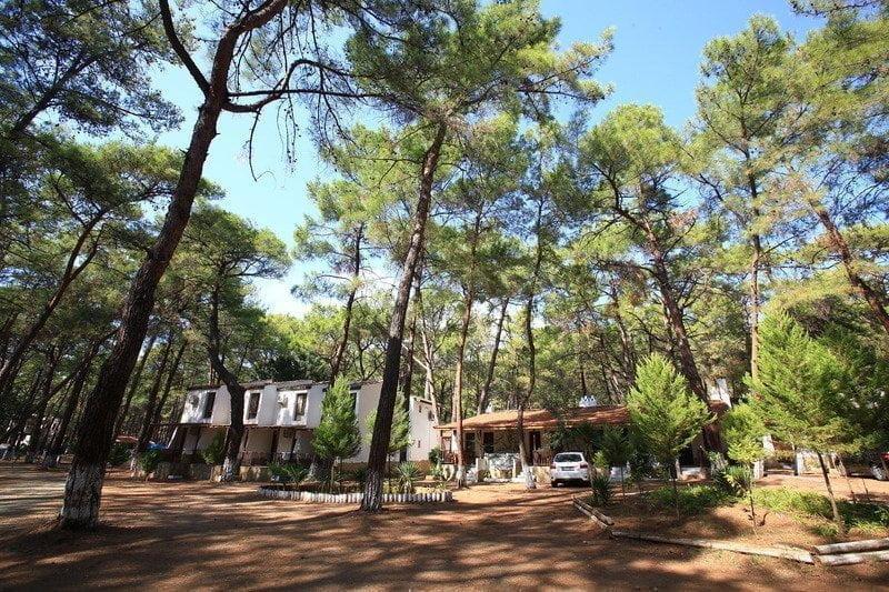 Aktur Camping