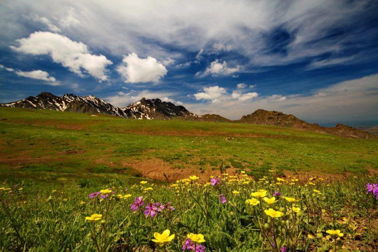 Erek Dağı