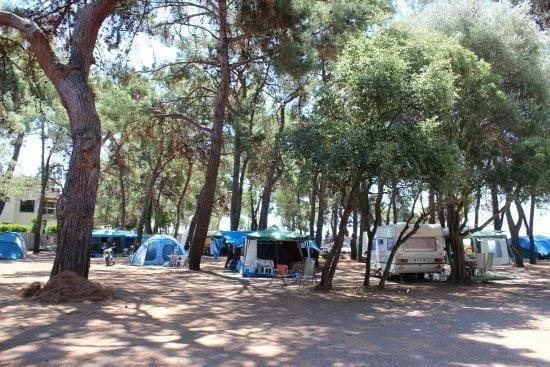 Hipo Kamp Gümüldür