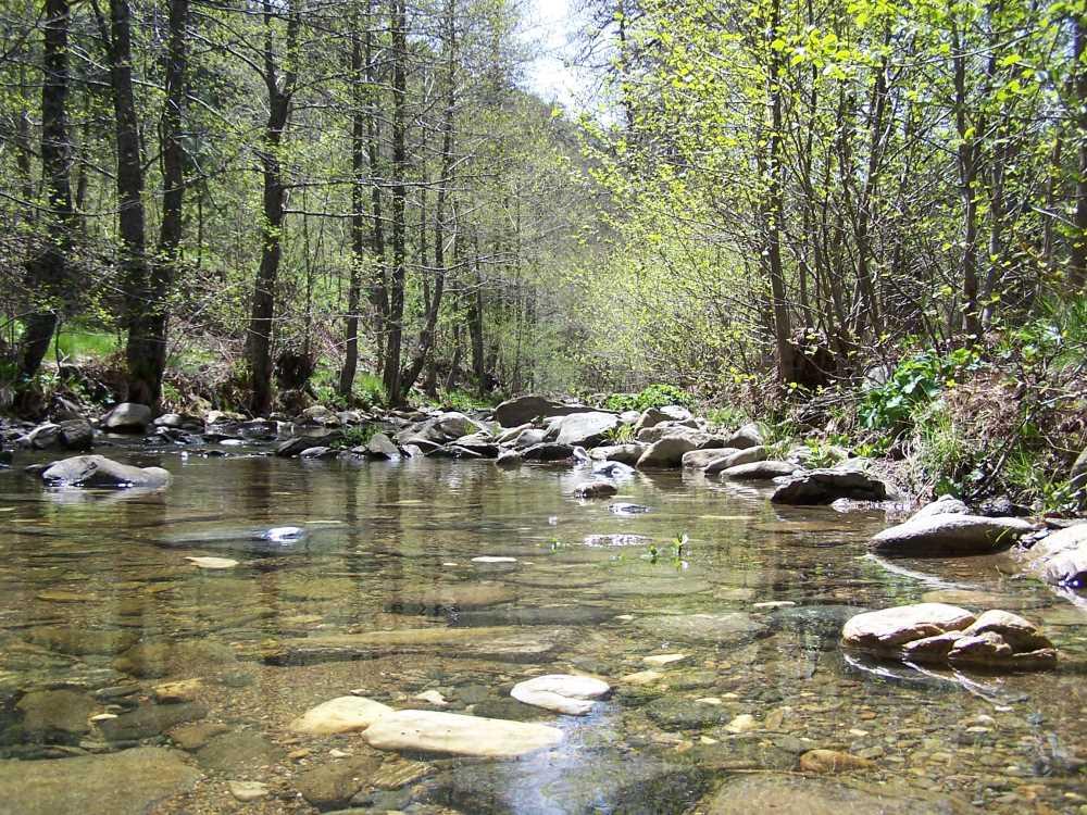 Kaz Dağları Milli Parkı